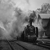 Large format, fine art black and white photograph of steam locomotive in head of passenger train. Martin Mojzis.